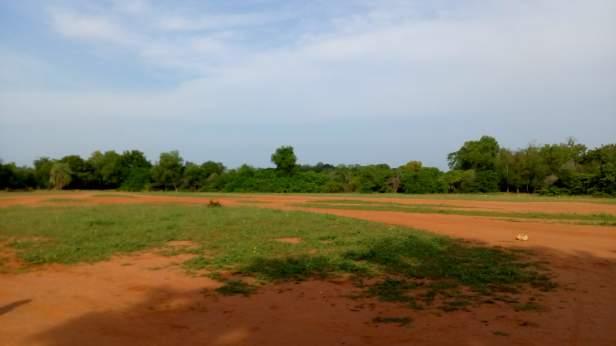 Open ground in Auroville