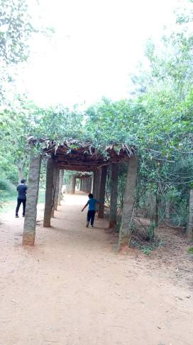 Shaded Walkway at the beginning of 1 km walk