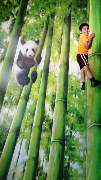 trick-eye-museum-panda