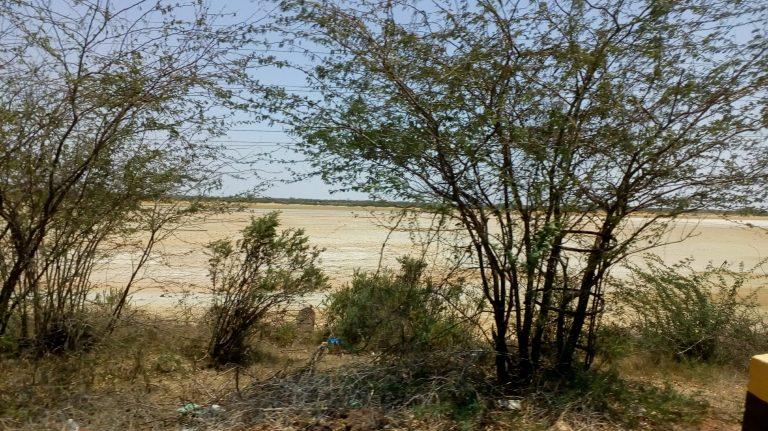 Dry Pullicat Lake