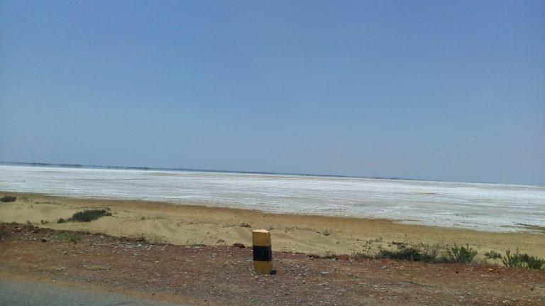 Salted Pullicat Lake