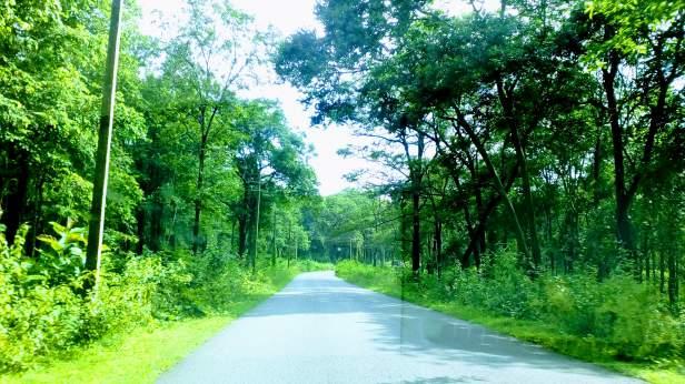 Bangalore-Wayanad drive
