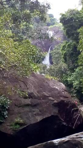View from level 2, Meenmutty falls