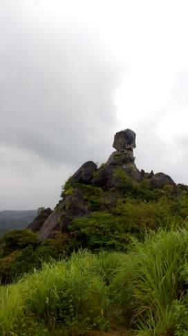 Phantom Rock - Wayanad