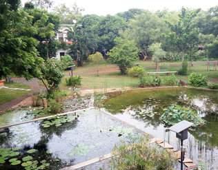 Arka Guest House, Auroville