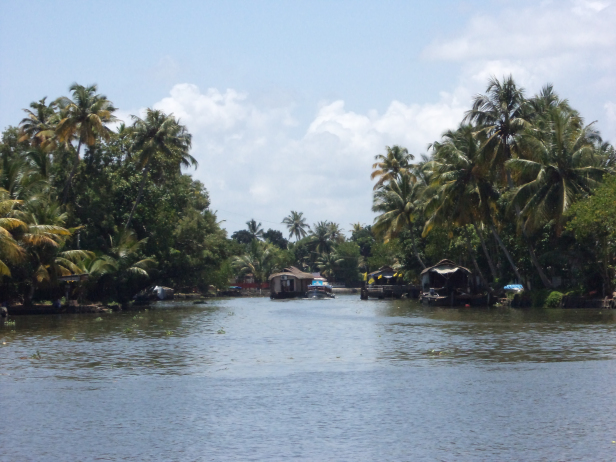 Houseboats in the Vembanad Lake