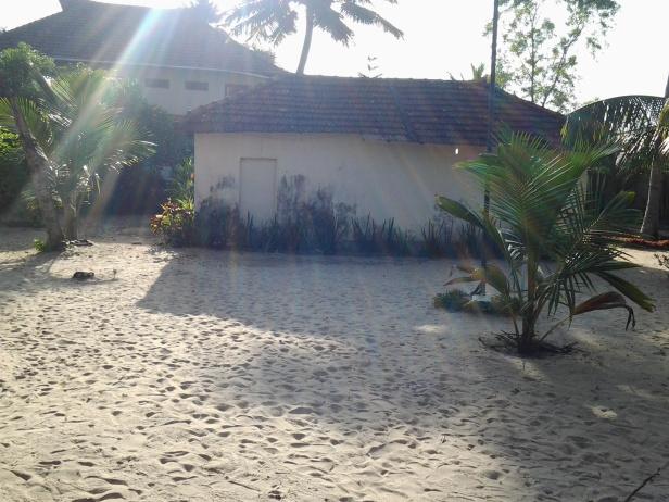 Garden area at Casamaria Beach Resort, Alleppey