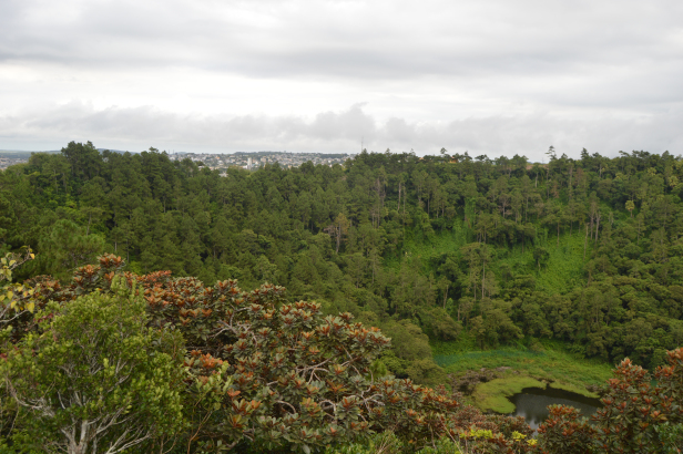 Trou Aux Cerf, Mauritius – View from the top